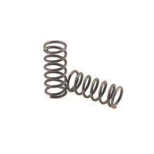 Precise carbon steel Plating Compression Spring manufacturer