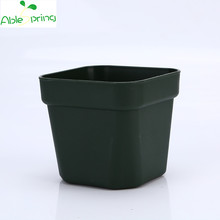 Special square small square color small fleshy little black plant flowers nursery plastic pots wholesale