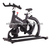 Hot Sale Swing Spin Bike FB-5809/Magnetic Exercise Bike
