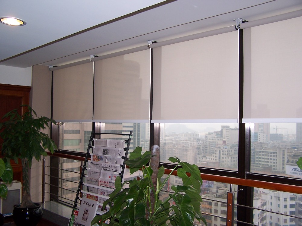 Somfy Motorized Roller Blinds Made In China Buy Somfy