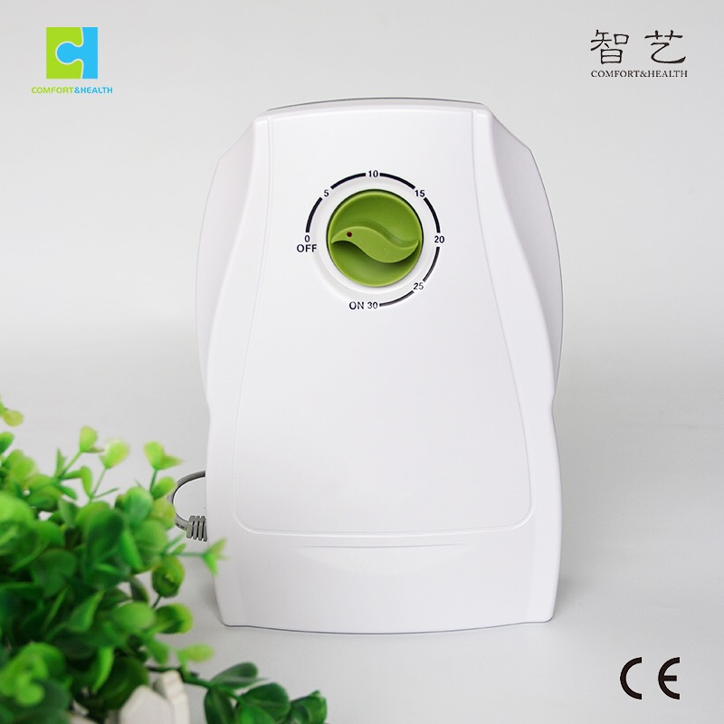 CE water food sterilization air purifier 500mg/h ozone generator with timer home use for sale