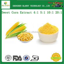 100% natural Free dried Sweet Corn Extract Powder/Zea mays L. Extract 4:1 5:1 10:1 20:1