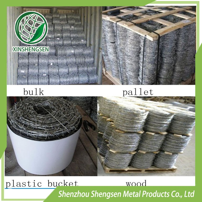 hot dipped gi barbed wire pinstripe workable price
