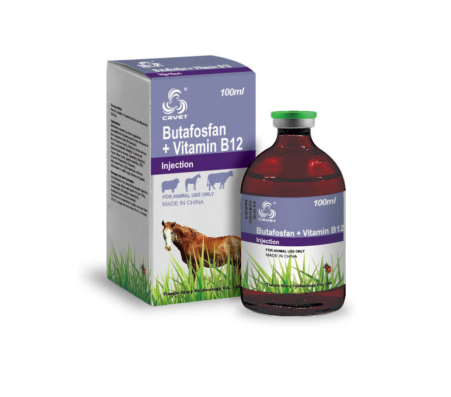 Butafosfan + Vitamin B12 Injection
