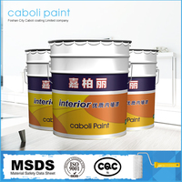 Caboli waterproof emulsion interior wall paint