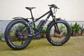 Fat electric bike with big power motor