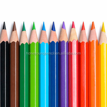 School professional art color pencil