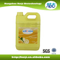 5L Hot sale dish washing liquid detergent(with or w/o pump)