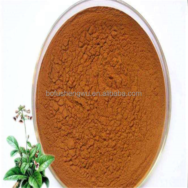 High quality prepared rehmannia root extract in bulk