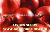Asian Vegetable Seeds