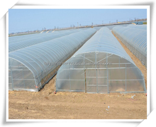 TAIYUAN poly film tunnels greenhouse shed for agriculture