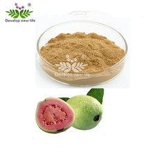 guava leaf extract powder, guava fruit extract with high quality