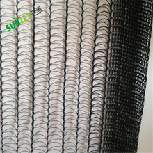 2*2 mesh size black bop trellis mesh anti bird netting,high quality HDPE UV treated protective bird resist mesh cheap price
