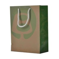 Drawstring Cosmetic Paper Shopping Bags
