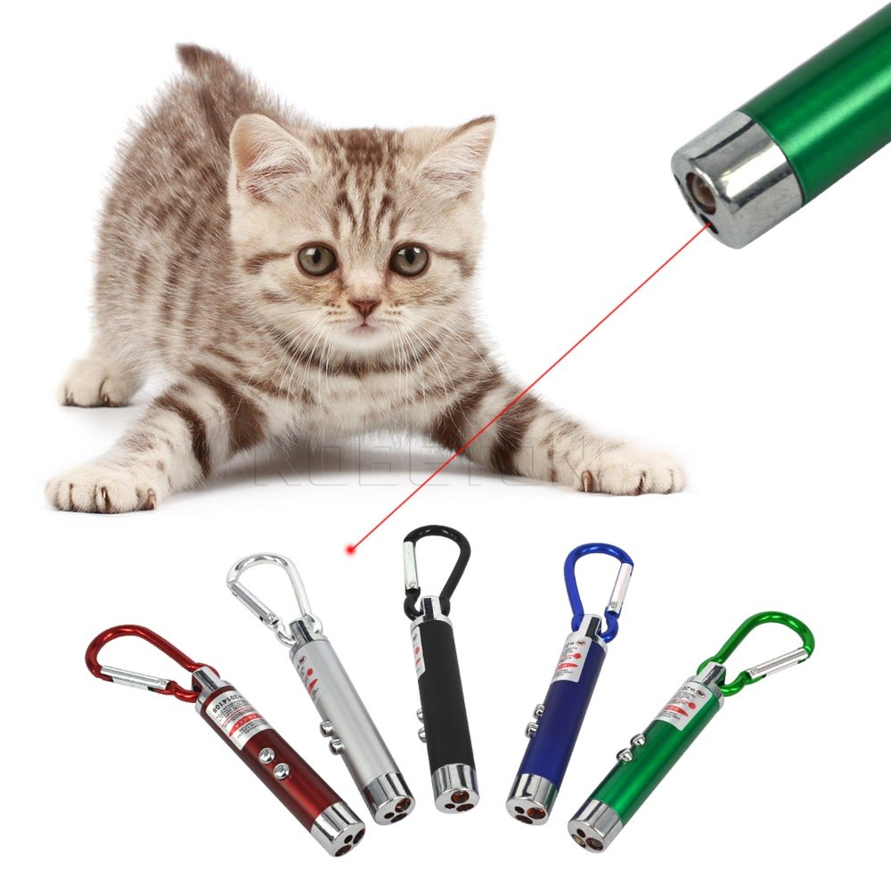 1pcs Mini FlashLight Torch Emergency Keychain 5mW 2 in 1 LED Laser Pen Pointer Brand New