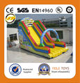 small indoor inflatable slide
