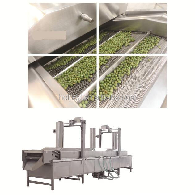continuous conveyor fryer
