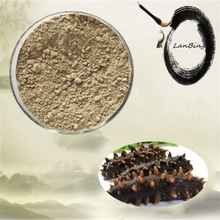 High quality and 100% natural sea cucumber powder dried cucumber powder sea cucumber extract