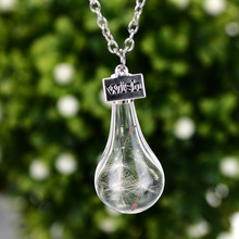 2016 explosion models selling flower dandelion Wish glass bottle pendant necklace