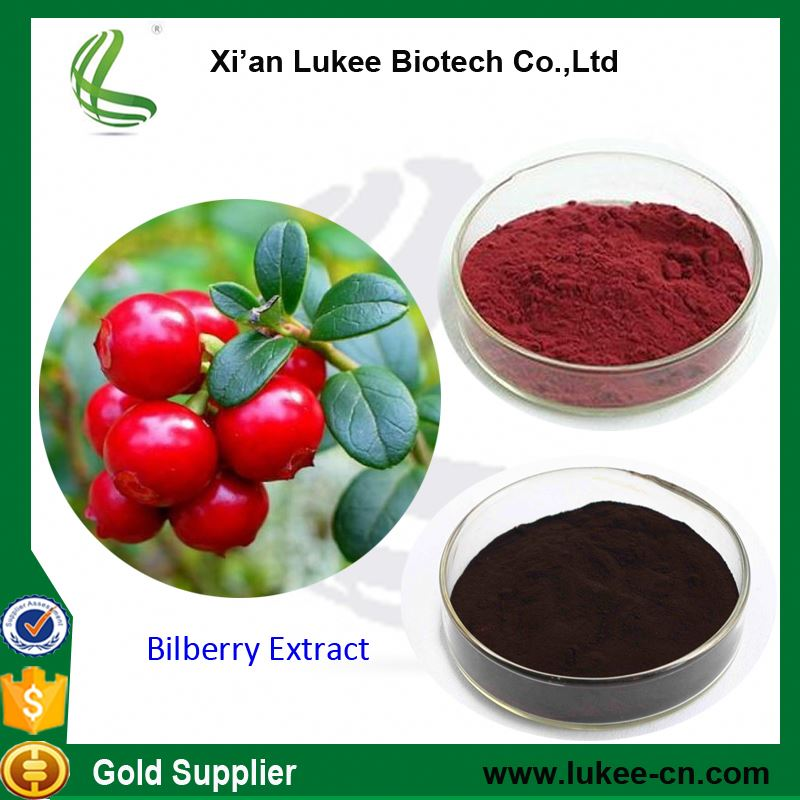 High Quality Bilberry Extract,Vaccinium myrtillus, Anthocyanin: 25%UV,CAS :7084-24-4