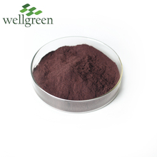 Cosmetic Grade High Quality Grape Seed Extract 95% opc in bulk