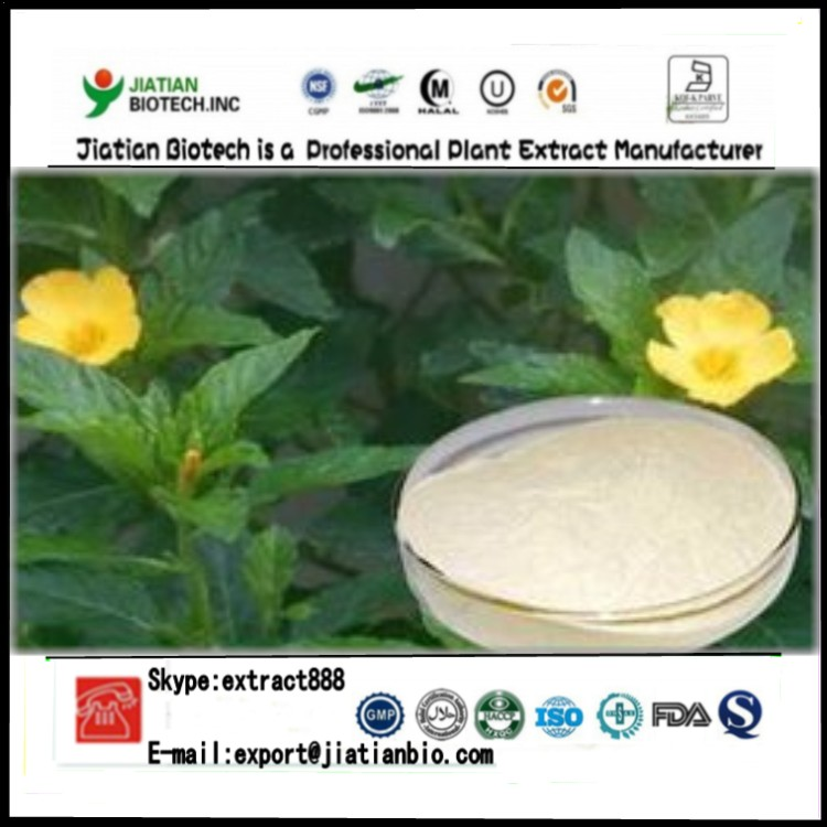 High quality Damiana leaf extract powder with Beta-sitosterol 10%-40%