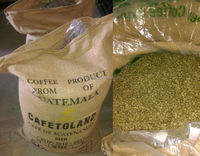 SALE BULK SUPPLY GREEN COFFEE ARABICA SPECIALITY COFFEE