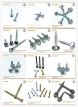 professional china screw manufacturer all kinds of screws and fasteners