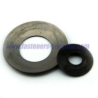Plain plated wing spring washers supplier