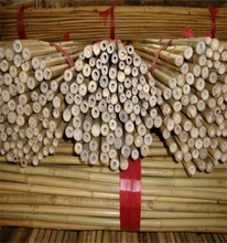Wy-J267 natural small Bamboo stakes /Tonkin bamboo cane