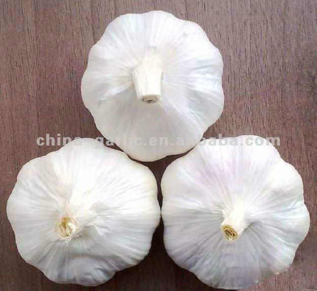 Good Farmer Fresh Garlic 2012 ' for Sale , Jinxiang Origin with Global Gap