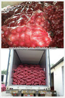 Chinese fresh white onions wholesalers direct import fresh vegetable for Africa markets