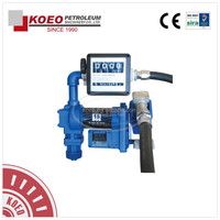 12V/24V Electric Diesel Transfer Pump with Self Priming Rotary Vane