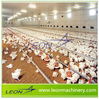LEON series prefab poultry farm equipment design chicken house