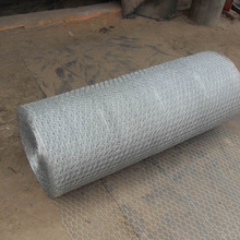 factory price lowes Galvanized chicken wire mesh roll for sale