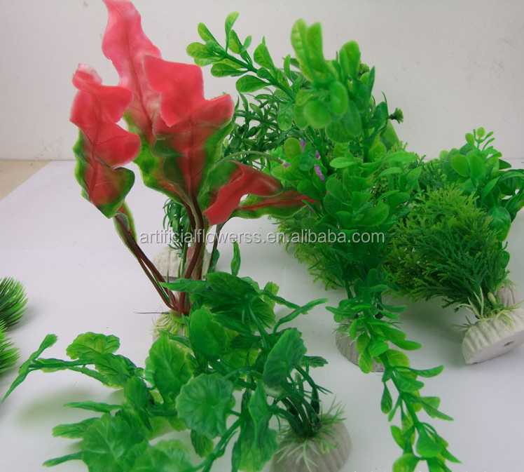 Wholesale landscaping aquarium aquatic plant view aquatic for Cheap pond plants