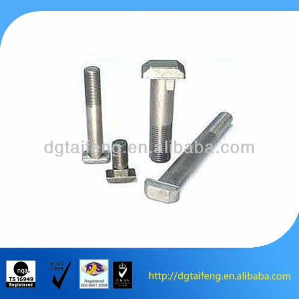 stainless steel din 261 T head bolts