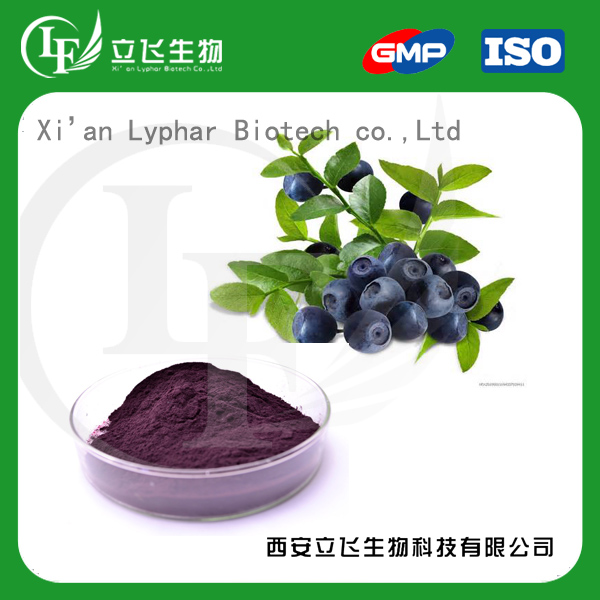 ISO Certified Natural Bilberry extract