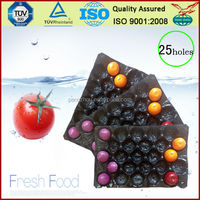 perforated,protecting fruit,39*59cm,black&blue,PP Tray for Apple,Tomato