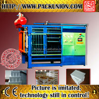 Plastic Eps foam molding machinery with favorable price