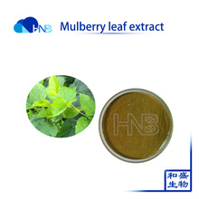 1-DNJ 1-Deoxynojirimycin for treat diabetes from Natural Mulberry Leaf Extract flavonoids