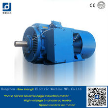 CE Squirrel Cage 335hp High Voltage Electric Motor