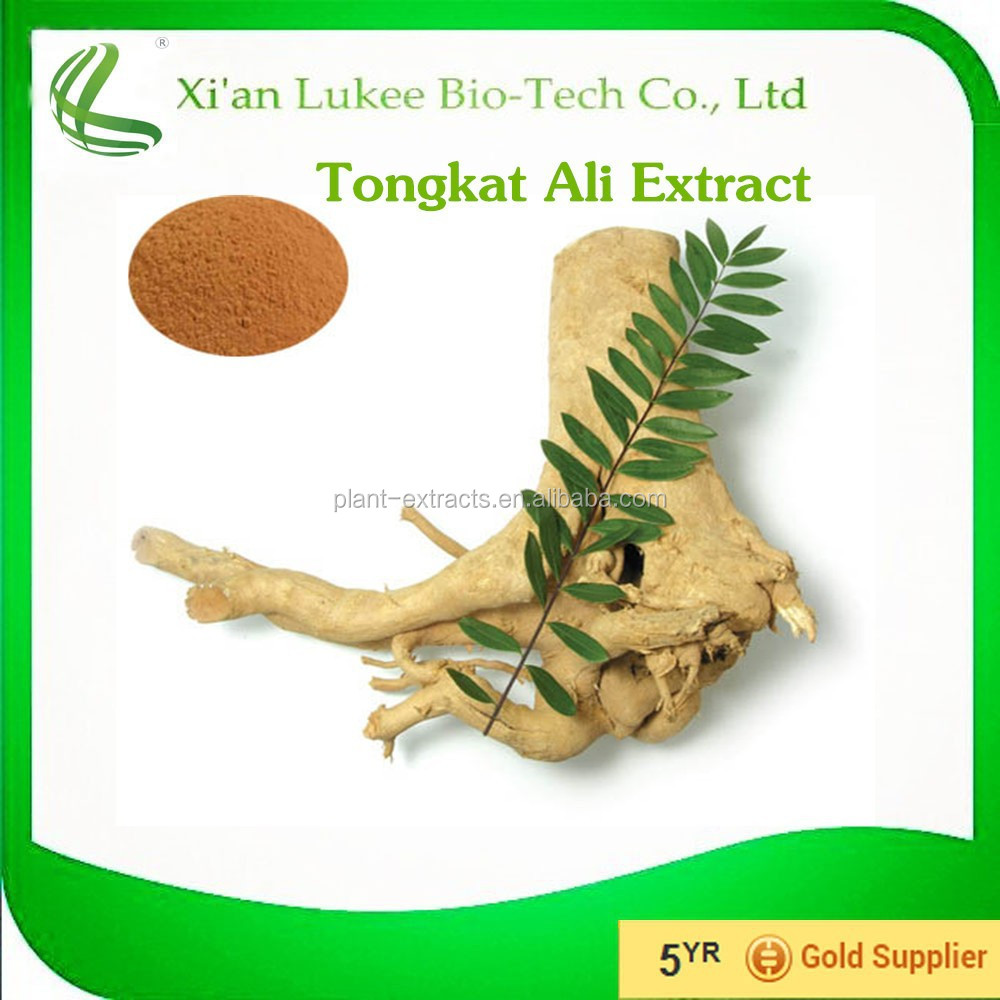 Chinese herbal penis pills / Tongkat Ali Extract 200:1 For Sexual Health