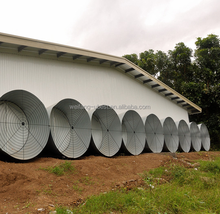 commercial chicken broiler poultry farm house design
