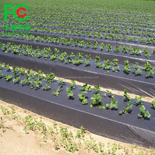 black white plastic mulch film/agricultural anti weed mulch/custom large size mulch film from china factory