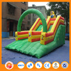 Double lane inflatable water slide with pool