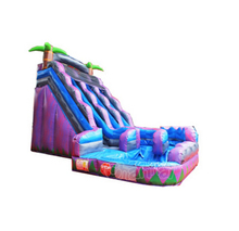 Purple Tropical Curved Inflatable Water Slide with Pool