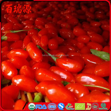 Palatable goji berry hot sale goji berries dried goji fruit with free sample