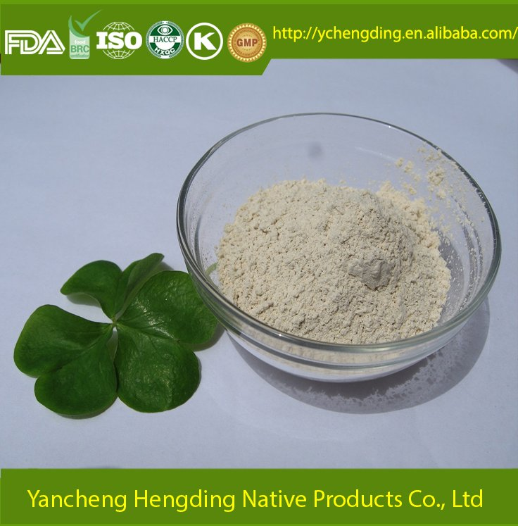 China products dried garlic powder novelty products for sell