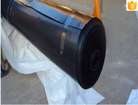 trade assurance Fish tank and swim pool hdpe geomembrane liner hdpe geomembrane geomembrane